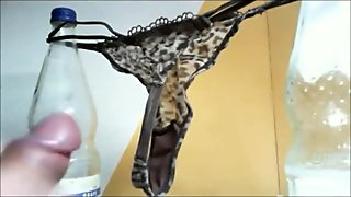 Cum in Thong String von User Sperma used panty dirty